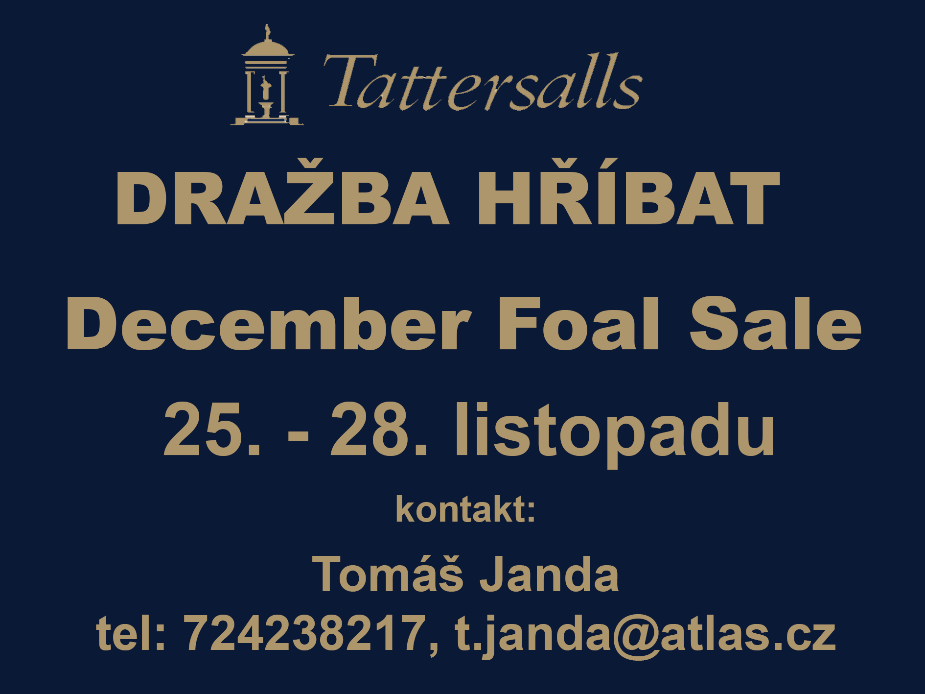 Tattersalls december foal sale 2020