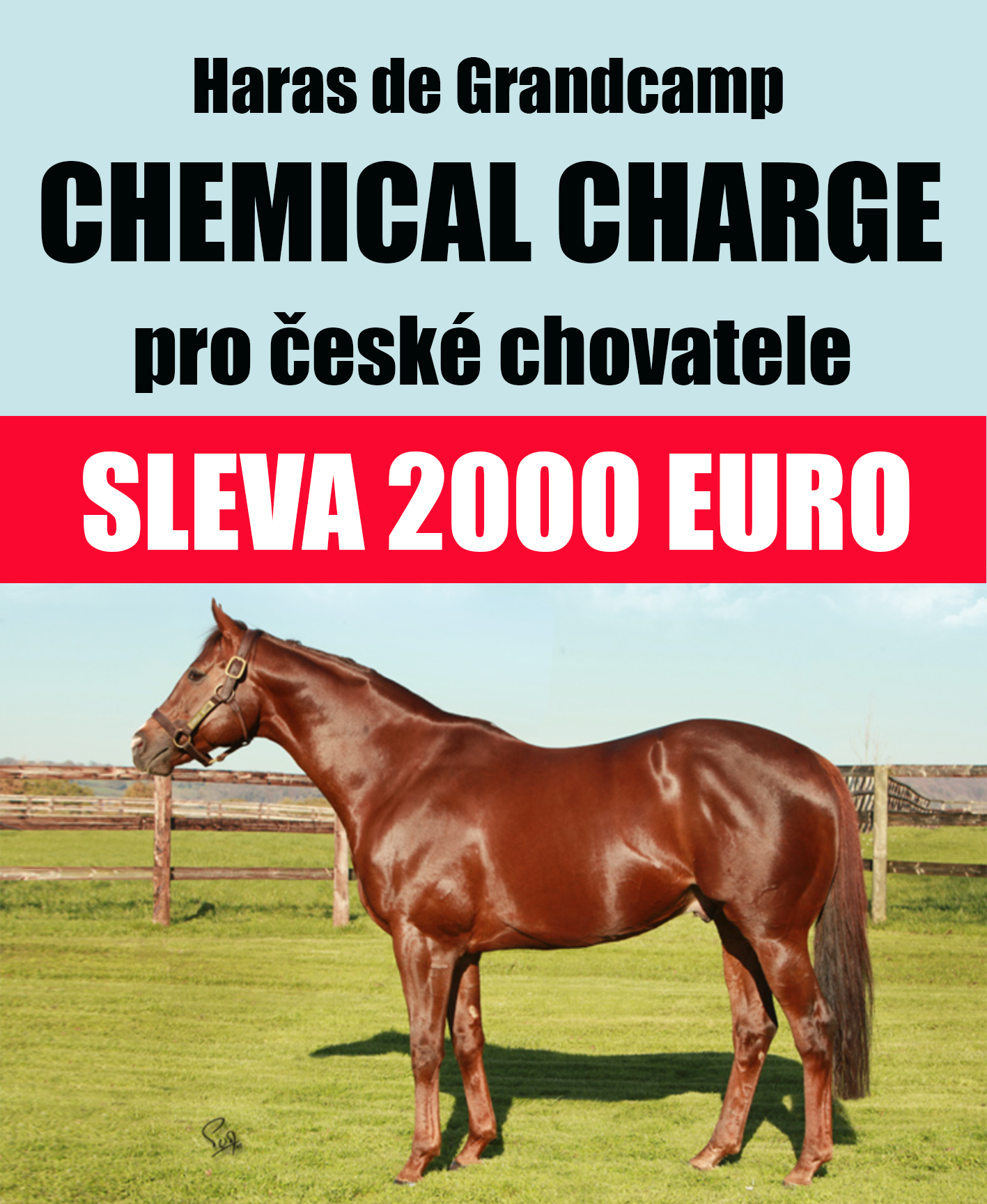 Chemical Charge