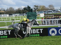 Tingle Creek soubojem vítězů Champion Chase